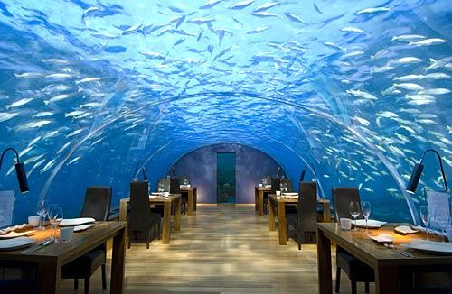 Ithaa Undersea Restaurant at the Conrad Maldives Rangali Island Hotel