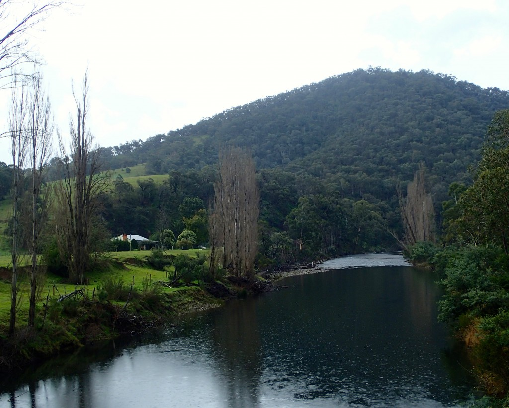 View from Wonnangatta Bridge at Waterford on the way to Dargo